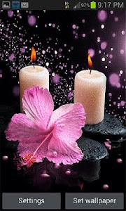 Pink Flower Candle LWP screenshot 0