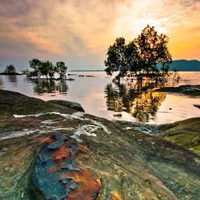Heat Of The Morning by Johari Nasib - Landscapes Waterscapes