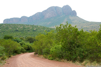 Photo: Marakele National Park, South Africa.