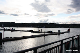 Photo: (Year 2) Day 338 - The Puget Sound at Paulsbo