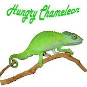 Hungry Chameleon
