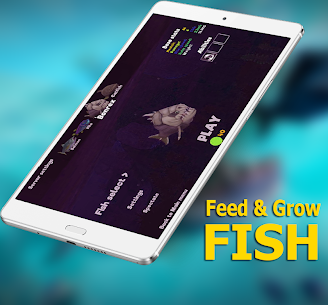 Guide for Fish Feed Grow Series 2020 1