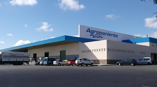 Grupo Agroponiente implanta protocolos de máxima seguridad en sus instalaciones