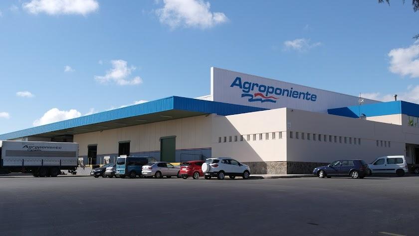 Instalaciones de Grupo Agroponiente