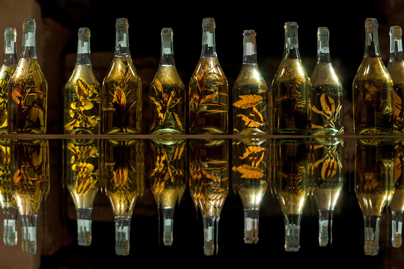 Riflessi alcolici  di borik57