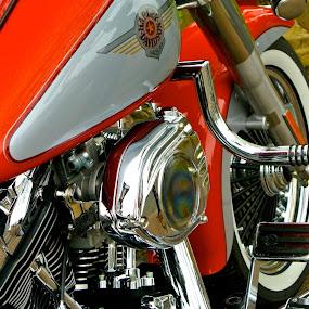 Harley Davidson engine by Yvonne Katcher - Transportation Motorcycles ( harley davidson, red, wheel, engine, pedal, shiny )
