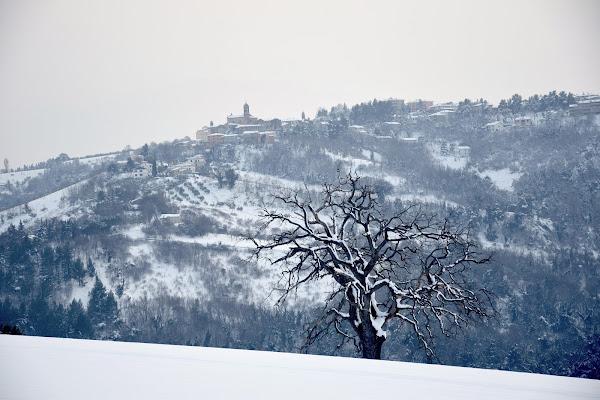 Freddo inverno di s_ornella