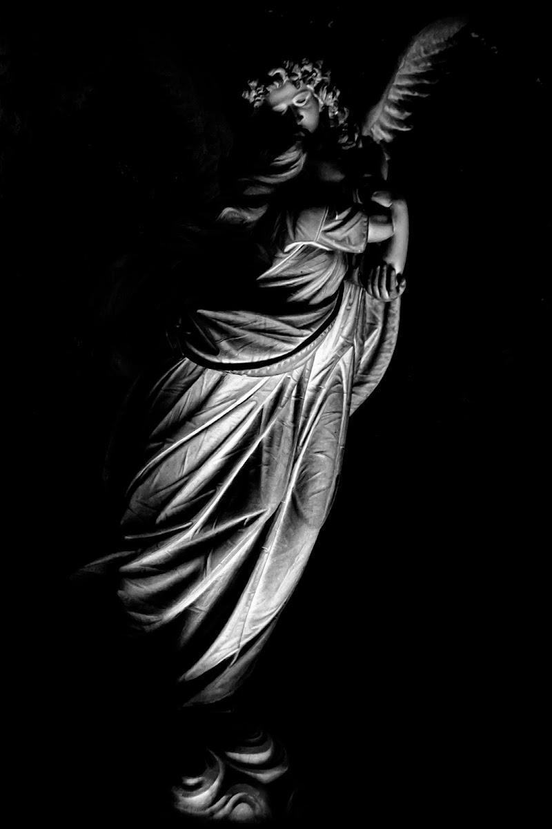 L'angelo della morte di Caterina Ottomano