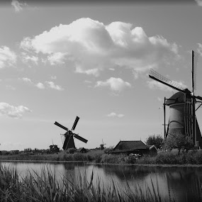 Dutch landscape by Gert de Vos - Black & White Landscapes (  )