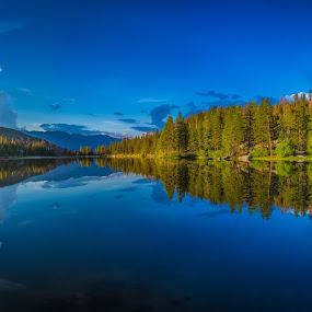 by Matthew Clausen - Landscapes Forests ( water, california, lake, forest,  )