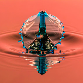 Bronco Water droplet by Domingo Washington - Abstract Water Drops & Splashes ( water, waterdroplet, bronco water droplet, bronco,  )