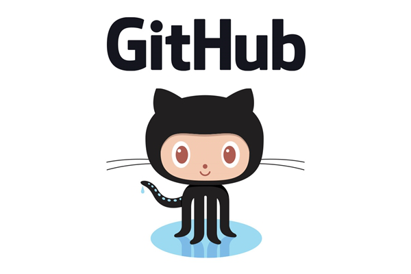 A link to the GitHub Homepage