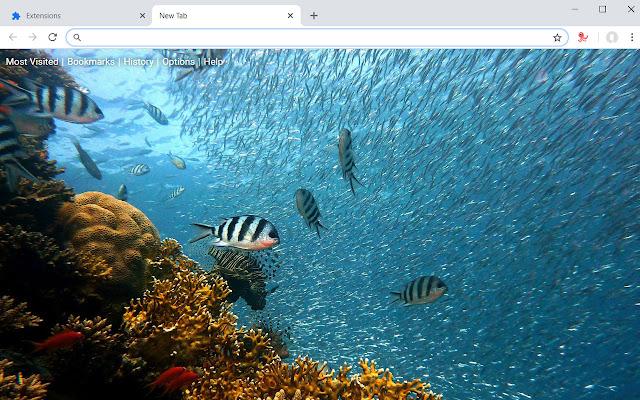 Ocean HD Wallpapers Underwater New Tab Theme