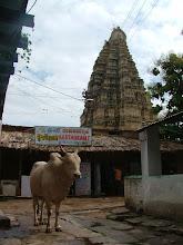 Photo: hampi, z tyłu virupaksha temple