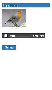 Tuinvogels screenshot 5