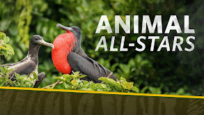 Animal All-Stars thumbnail