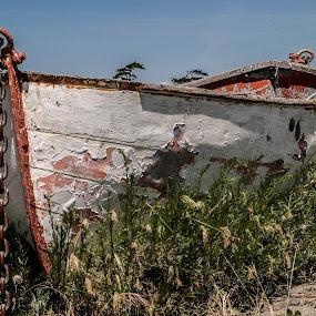 Dry Dock by Craig Pifer - Transportation Boats ( old, dry, anchored, derelict, transportation, rowboat, boat )