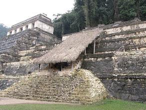 Photo: Parc national de Palenque