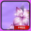 Purple Flower Butterflies LWP icon