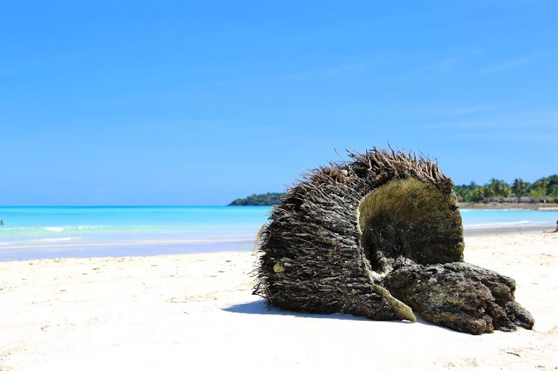 coral beach di Andrea Fontana