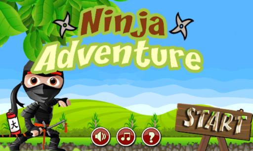 Acts Of Ninja Adventure