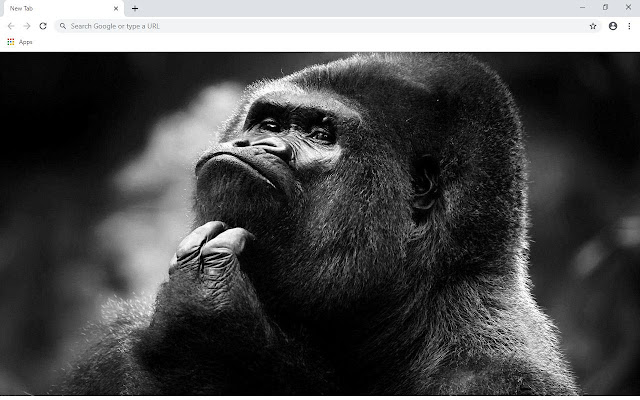 Gorilla Wallpapers and New Tab