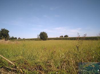 terrain à Limendous (64)