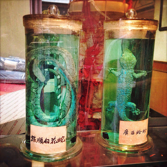 Chinese, Bone Setter, doctor, bone, Preserved, Snake, Gecko,  跌打, 蛇, 館