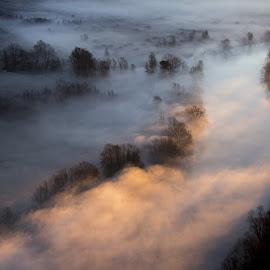 Sunset on moring mist by Pietro Ebner - Landscapes Sunsets & Sunrises ( foggy, tree, fog, sunset, trees, morning, river, mist,  )