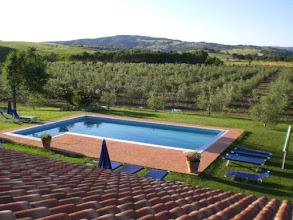 Photo: Vista dall'alto della piscina e dell'olivetoGirasole saturnia b&b agriturismo