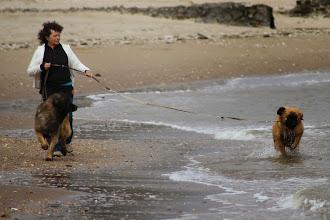 Photo: Première course dans les vagues