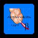 APPendicitis Light Android apk