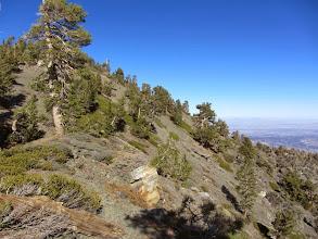 Photo: View northeast from the south ridge of Dawson Peak