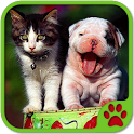 Cats And Dogs Games icon