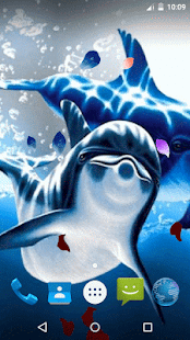 Magic Wave - Cute Dolphin LWP - náhled