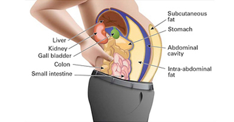 Toxins Stored in your Fat Cells Could be Making You Fat and Swollen. Here's What You Need to Do