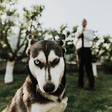 Wedding photographer Sergey Baloga (spiritual). Photo of 22.07.2018