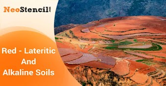 Red - Lateritic And Alkaline Soils