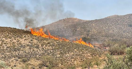 Incendio en la barriada arboleana de Limaria