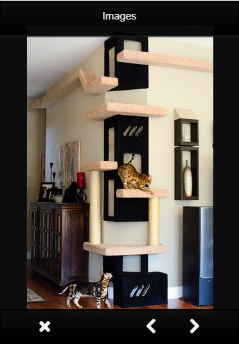 Indoor Cat House Ideas - Android Apps on Google Play