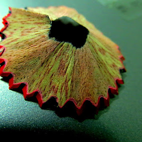 Macro Spiral by Neeraj S - Artistic Objects Other Objects