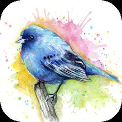 Water Color Paint - Pencil Sketch Art