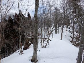 左に植林が現れる