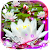 Lotos Lily Water Live wallpaper file APK for Gaming PC/PS3/PS4 Smart TV
