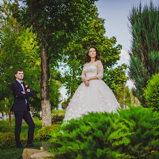 Wedding photographer Denis Fedotov (DenisFedotov). Photo of 23.09.2017