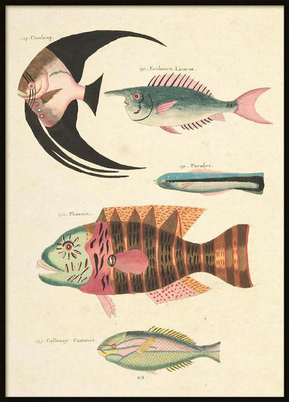 Vintage Fishes 4, Poster