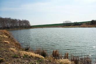 Photo: rybník před Slezskými Pavlovicemi
