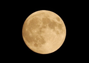 Photo: 中秋の名月。