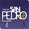 San Pedro 2016 icon