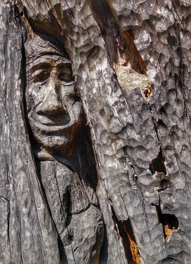 Lo Spirito del bosco di Jorjo
